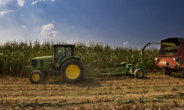 file photo from EKU's Meadowbrook Farm